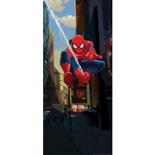 Spiderman Decorazione Murales per Porte e Pareti